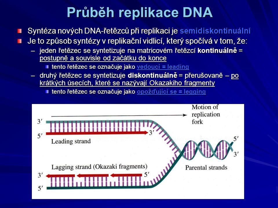 Průběh replikace DNA Syntéza nových DNA-řetězců při replikaci je semidiskontinuální Je to způsob syntézy v replikační vidlicí, který spočívá v tom, že: –jeden řetězec se syntetizuje na matricovém řetězcí kontinuálně = postupně a souvisle od začátku do konce tento řetězec se označuje jako vedoucí = leading –druhý řetězec se syntetizuje diskontinuálně = přerušovaně – po krátkých úsecích, které se nazývají Okazakiho fragmenty tento řetězec se označuje jako opožďující se = legging