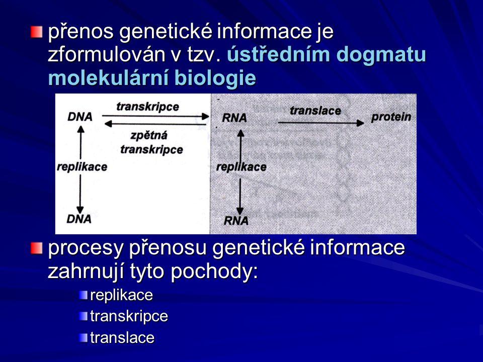 přenos genetické informace je zformulován v tzv. ústředním dogmatu molekulární biologie procesy přenosu genetické informace zahrnují tyto pochody: rep