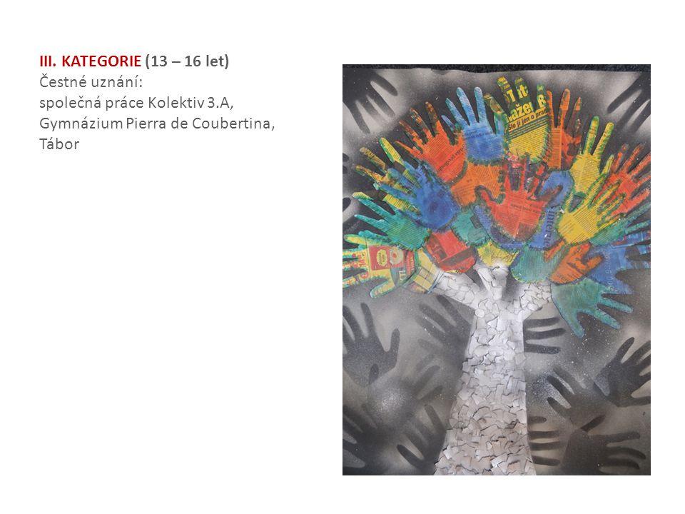 III. KATEGORIE (13 – 16 let) Čestné uznání: společná práce Kolektiv 3.A, Gymnázium Pierra de Coubertina, Tábor