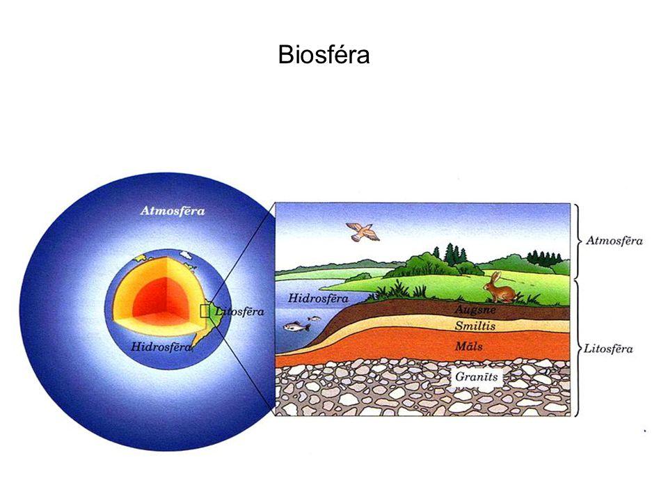 Rozmanitost biosféry je obrovská.