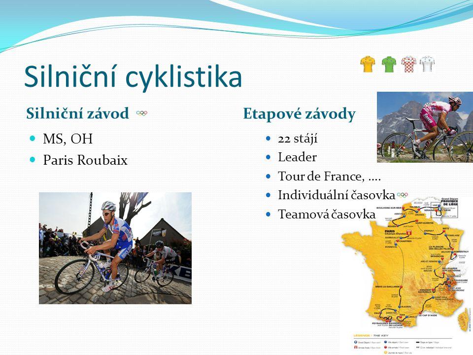 Silniční cyklistika Silniční závod Etapové závody MS, OH Paris Roubaix 22 stájí Leader Tour de France, …. Individuální časovka Teamová časovka