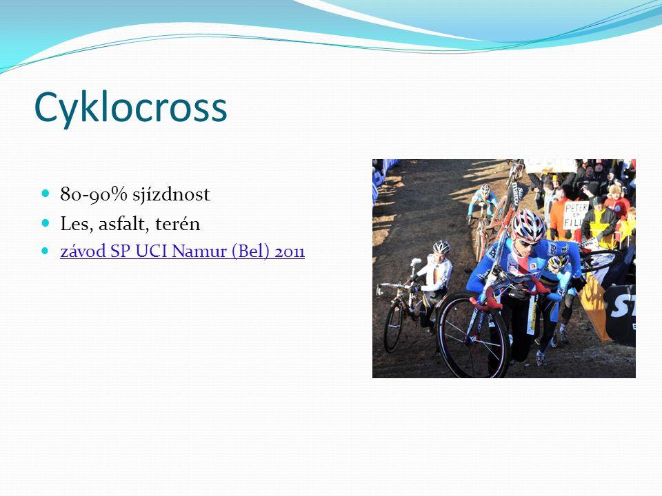 Cyklocross 80-90% sjízdnost Les, asfalt, terén závod SP UCI Namur (Bel) 2011