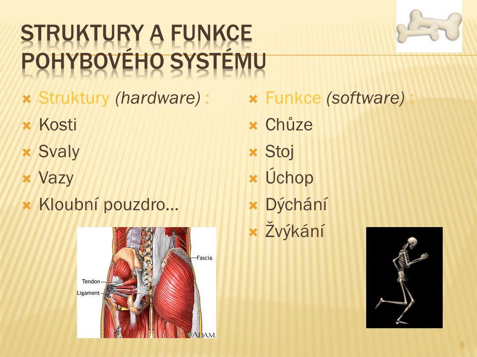  Struktury (hardware) :  Kosti  Svaly  Vazy  Kloubní pouzdro…  Funkce (software) :  Chůze  Stoj  Úchop  Dýchání  Žvýkání 6