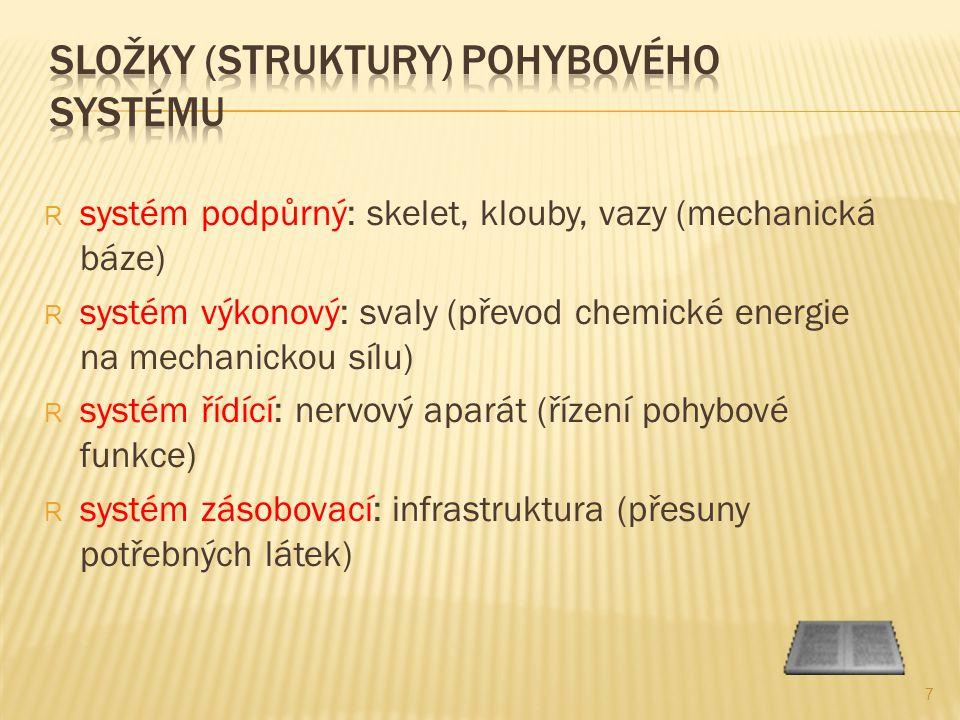 R systém podpůrný: skelet, klouby, vazy (mechanická báze) R systém výkonový: svaly (převod chemické energie na mechanickou sílu) R systém řídící: nervový aparát (řízení pohybové funkce) R systém zásobovací: infrastruktura (přesuny potřebných látek) 7