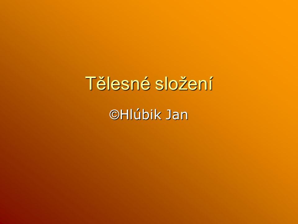 Tělesné složení © Hlúbik Jan