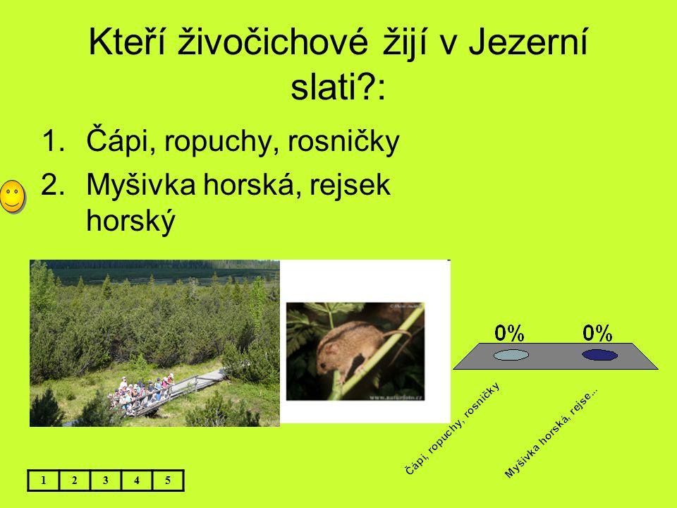 Kteří živočichové žijí v Jezerní slati?: 1.Čápi, ropuchy, rosničky 2.Myšivka horská, rejsek horský 12345