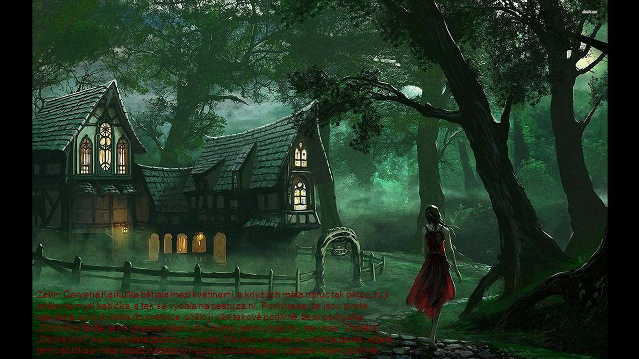 Zatím Červená Karkulka běhala mezi květinami, a když jich měla náruč tak plnou, tu jí přišla na mysl babička, a tak se vydala na cestu za ní. Podivila