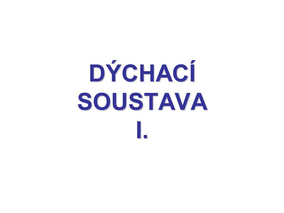 DÝCHACÍ SOUSTAVA I.
