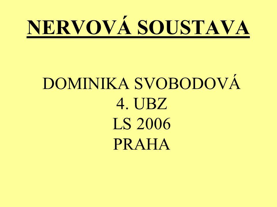 NERVOVÁ SOUSTAVA DOMINIKA SVOBODOVÁ 4. UBZ LS 2006 PRAHA