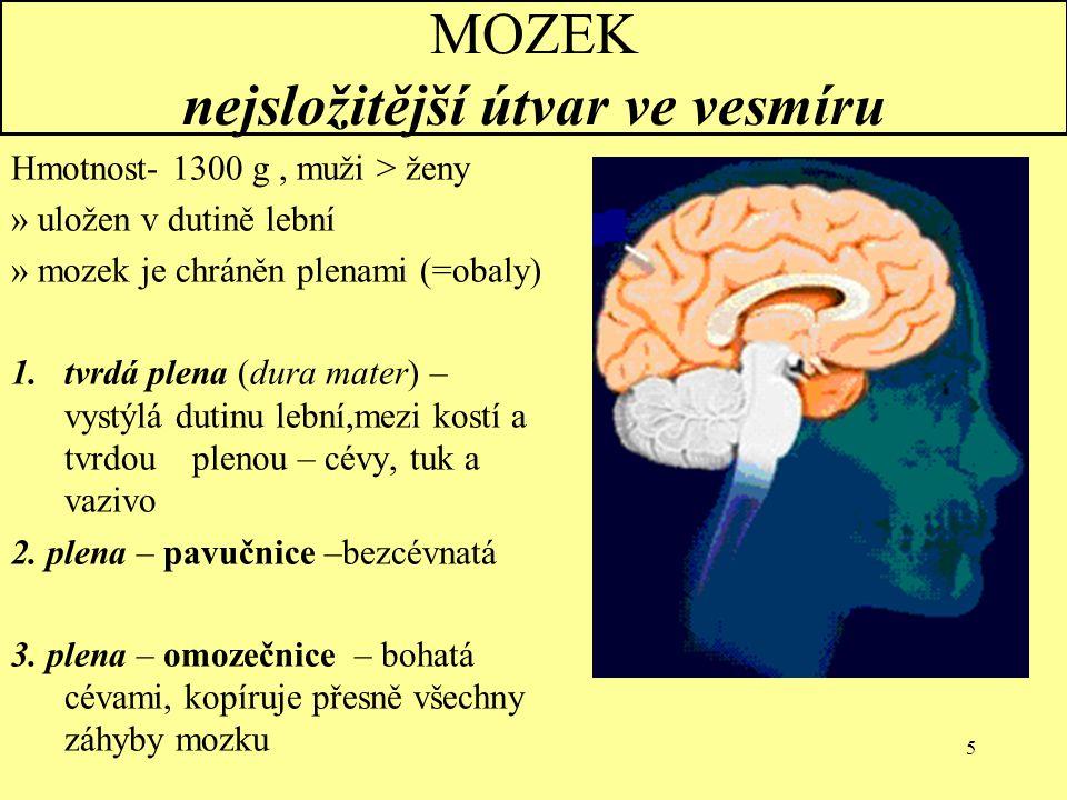 5 MOZEK nejsložitější útvar ve vesmíru Hmotnost- 1300 g, muži > ženy » uložen v dutině lební » mozek je chráněn plenami (=obaly) 1.tvrdá plena (dura m