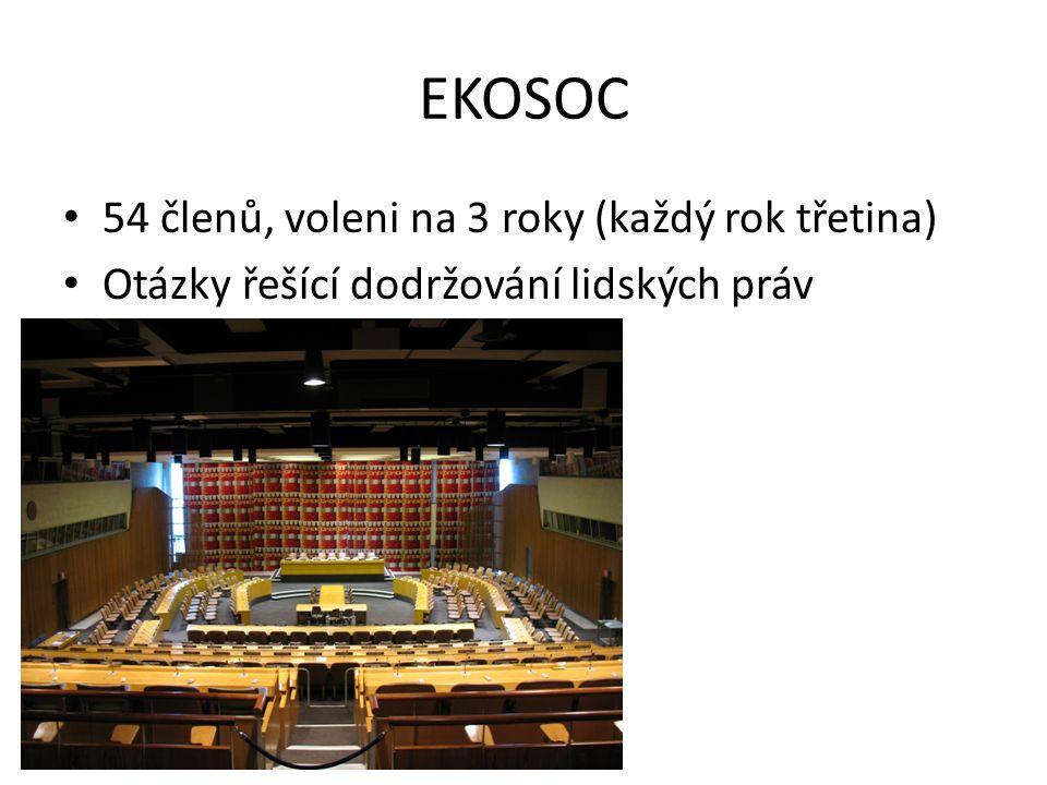 EKOSOC 54 členů, voleni na 3 roky (každý rok třetina) Otázky řešící dodržování lidských práv