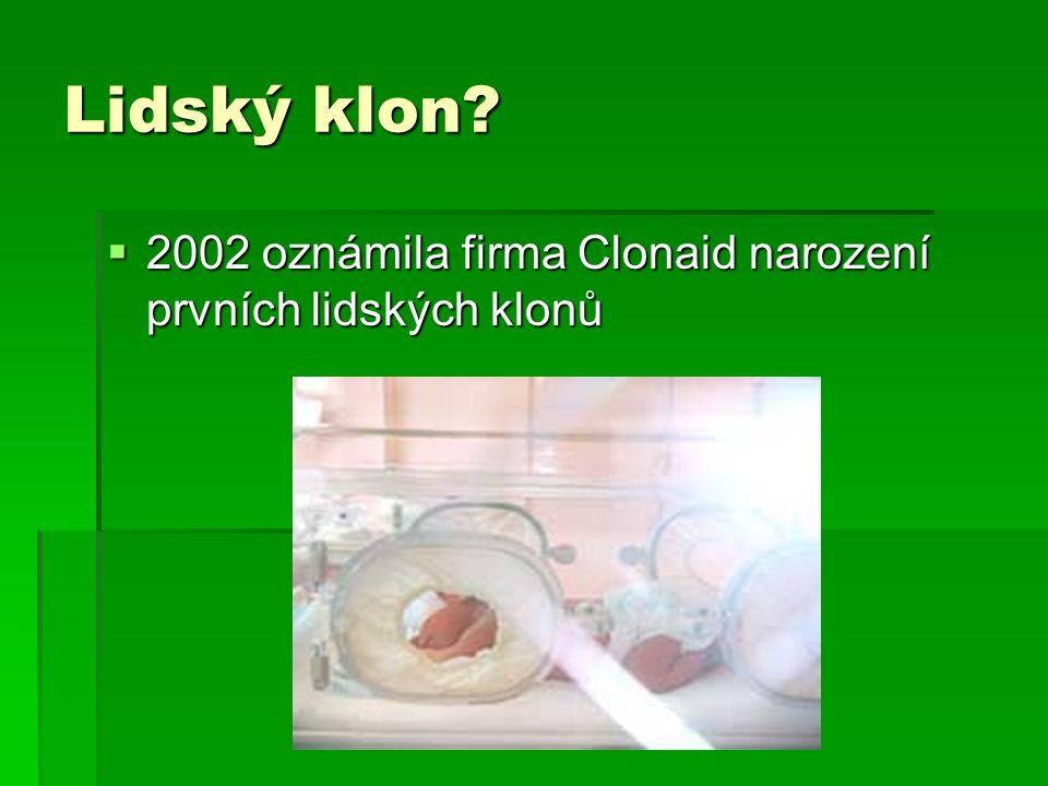 Lidský klon?  2002 oznámila firma Clonaid narození prvních lidských klonů