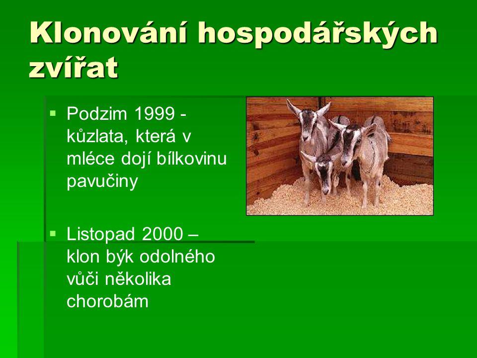 Klonování hospodářských zvířat   Podzim 1999 - kůzlata, která v mléce dojí bílkovinu pavučiny   Listopad 2000 – klon býk odolného vůči několika chorobám
