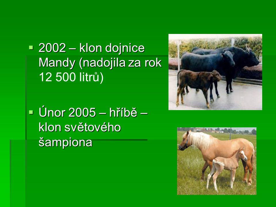  2002 – klon dojnice Mandy (nadojila za rok  2002 – klon dojnice Mandy (nadojila za rok 12 500 litrů)  Únor 2005 – hříbě – klon světového šampiona