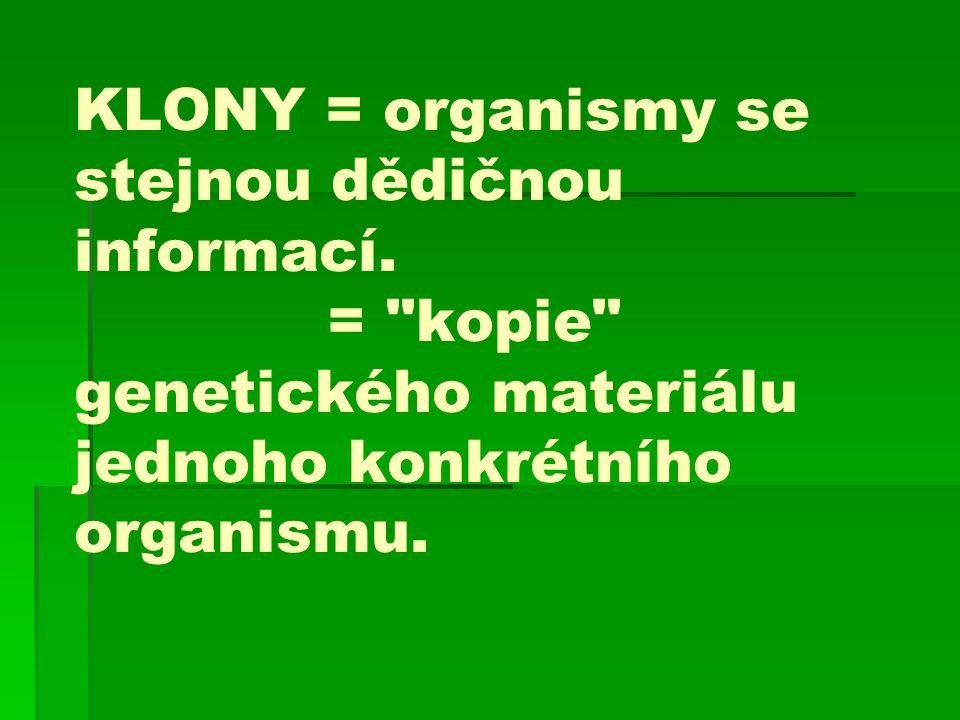KLONY = organismy se stejnou dědičnou informací.
