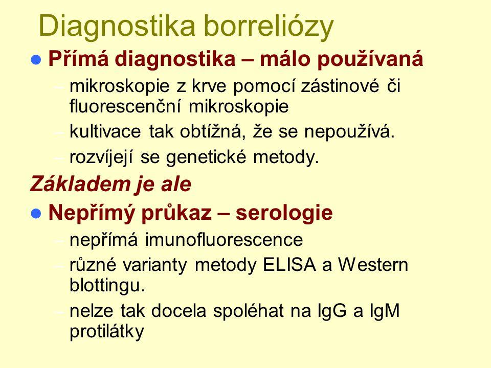 Diagnostika borreliózy Přímá diagnostika – málo používaná – mikroskopie z krve pomocí zástinové či fluorescenční mikroskopie – kultivace tak obtížná,