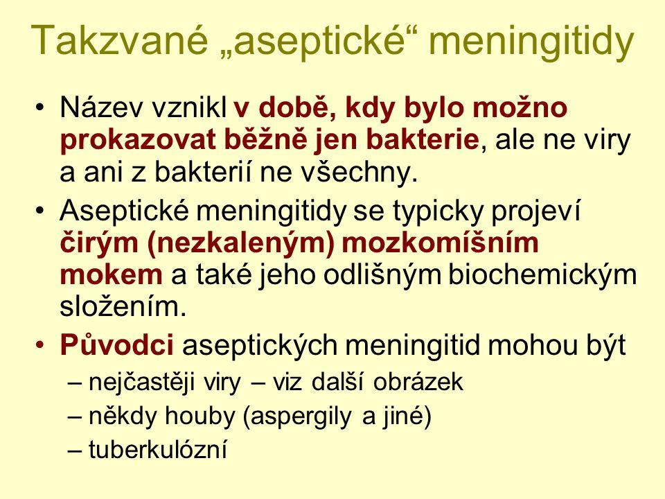 """Takzvané """"aseptické"""" meningitidy Název vznikl v době, kdy bylo možno prokazovat běžně jen bakterie, ale ne viry a ani z bakterií ne všechny. Aseptické"""