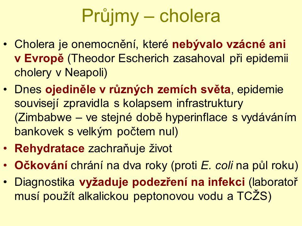 Průjmy – cholera Cholera je onemocnění, které nebývalo vzácné ani v Evropě (Theodor Escherich zasahoval při epidemii cholery v Neapoli) Dnes ojediněle