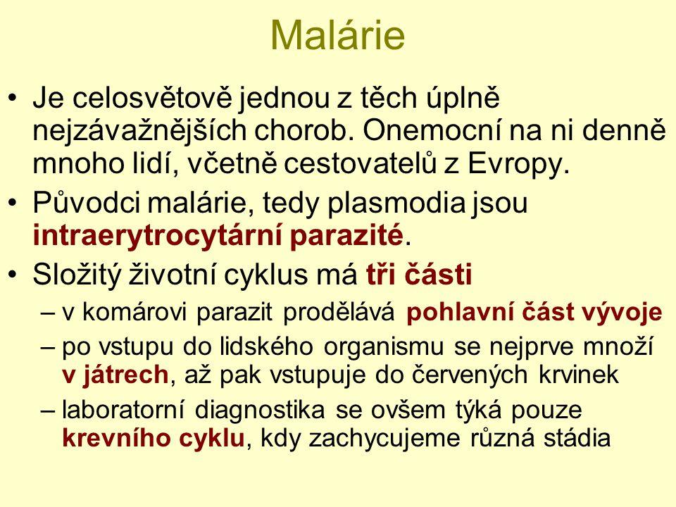 Malárie Je celosvětově jednou z těch úplně nejzávažnějších chorob. Onemocní na ni denně mnoho lidí, včetně cestovatelů z Evropy. Původci malárie, tedy