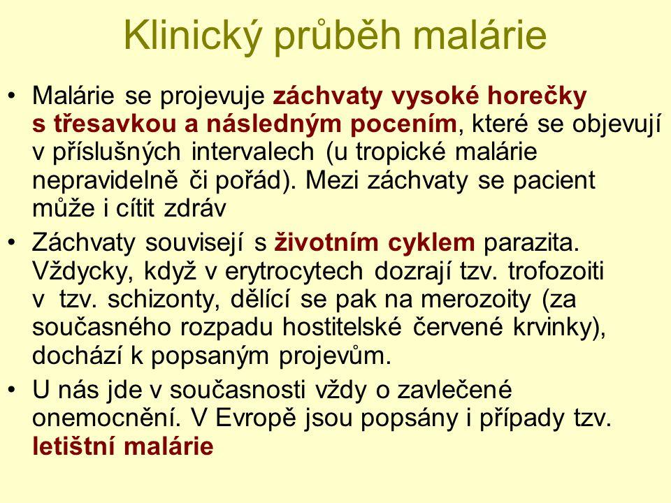 Klinický průběh malárie Malárie se projevuje záchvaty vysoké horečky s třesavkou a následným pocením, které se objevují v příslušných intervalech (u t
