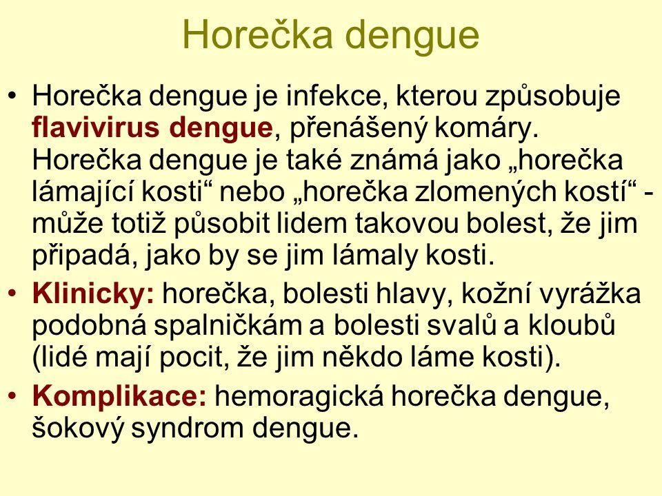 """Horečka dengue Horečka dengue je infekce, kterou způsobuje flavivirus dengue, přenášený komáry. Horečka dengue je také známá jako """"horečka lámající ko"""