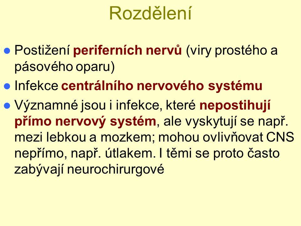 Rozdělení Postižení periferních nervů (viry prostého a pásového oparu) Infekce centrálního nervového systému Významné jsou i infekce, které nepostihuj