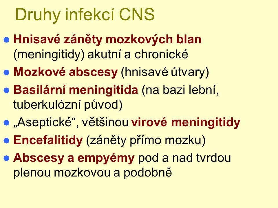 Druhy infekcí CNS Hnisavé záněty mozkových blan (meningitidy) akutní a chronické Mozkové abscesy (hnisavé útvary) Basilární meningitida (na bazi lební