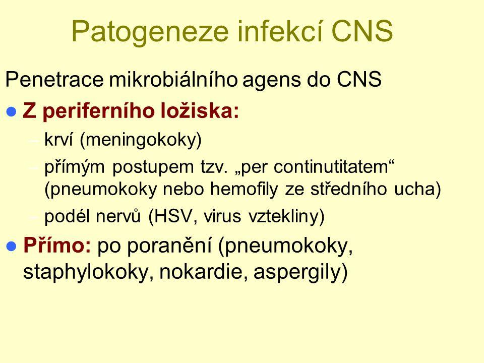 """Patogeneze infekcí CNS Penetrace mikrobiálního agens do CNS Z periferního ložiska: – krví (meningokoky) – přímým postupem tzv. """"per continutitatem"""" (p"""