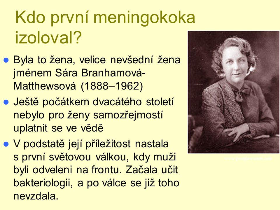 Kdo první meningokoka izoloval? Byla to žena, velice nevšední žena jménem Sára Branhamová- Matthewsová (1888–1962) Ještě počátkem dvacátého století ne