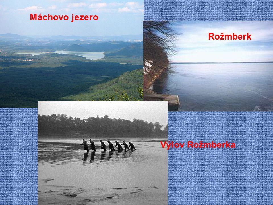 Jezera: 1. ledovcového původu 2. krasová jezírka 3. zahrazením údolí potoka sesuvem půdy 4. jezera v rašelinách 5. opuštěná říční ramena Rybníky: dávn
