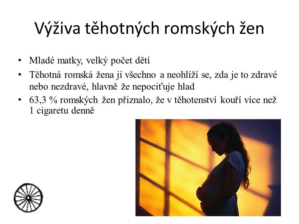 Výživa těhotných romských žen Mladé matky, velký počet dětí Těhotná romská žena jí všechno a neohlíží se, zda je to zdravé nebo nezdravé, hlavně že ne