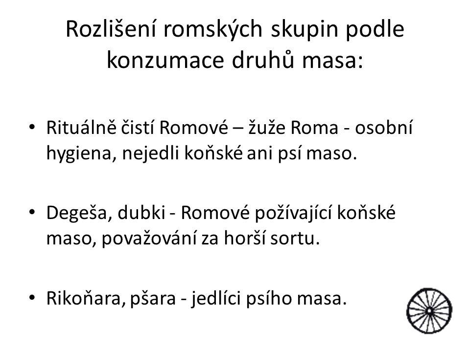 Rozlišení romských skupin podle konzumace druhů masa: Rituálně čistí Romové – žuže Roma - osobní hygiena, nejedli koňské ani psí maso. Degeša, dubki -