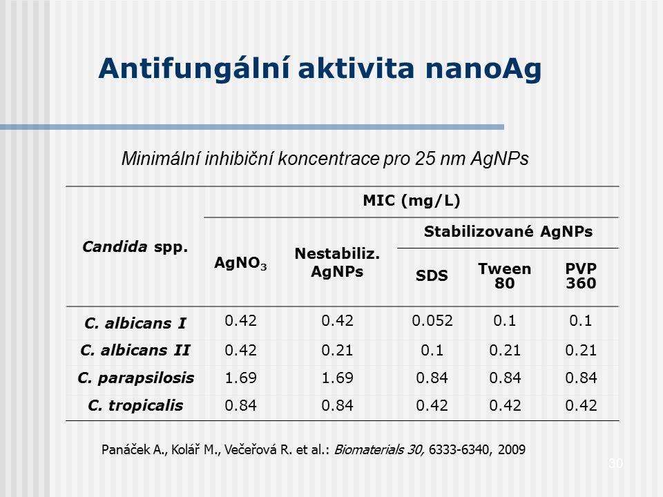 30 Antifungální aktivita nanoAg Minimální inhibiční koncentrace pro 25 nm AgNPs Candida spp. MIC (mg/L) AgNO 3 Nestabiliz. AgNPs Stabilizované AgNPs S