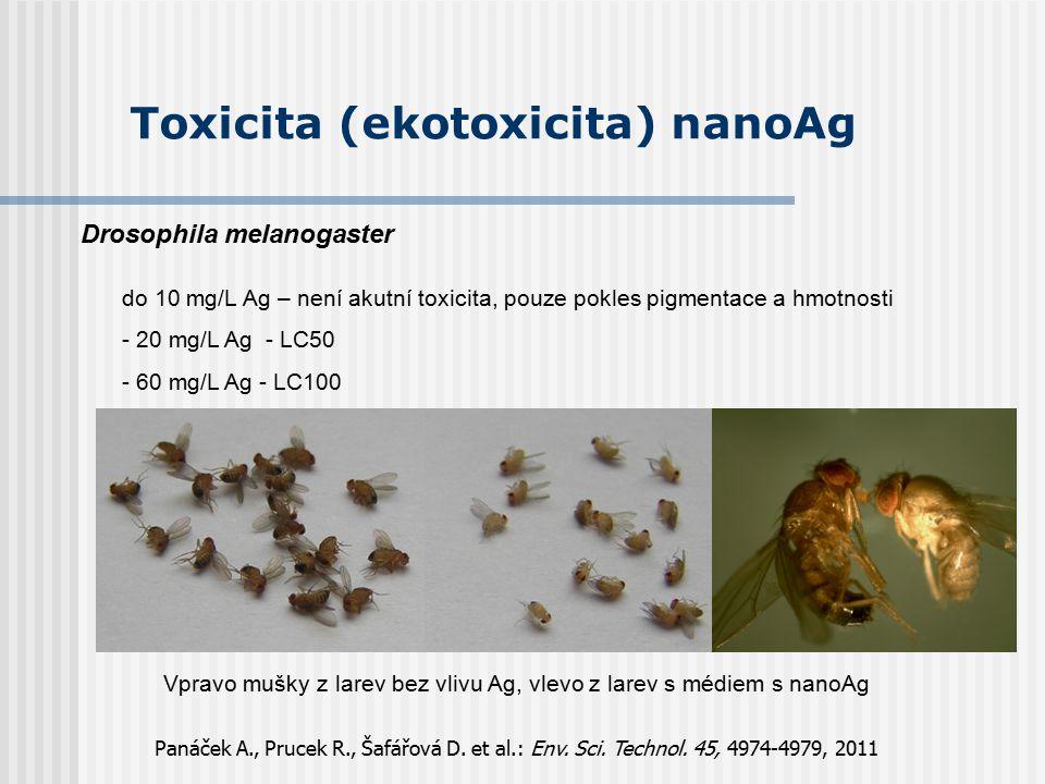 Toxicita (ekotoxicita) nanoAg Drosophila melanogaster do 10 mg/L Ag – není akutní toxicita, pouze pokles pigmentace a hmotnosti - 20 mg/L Ag - LC50 -