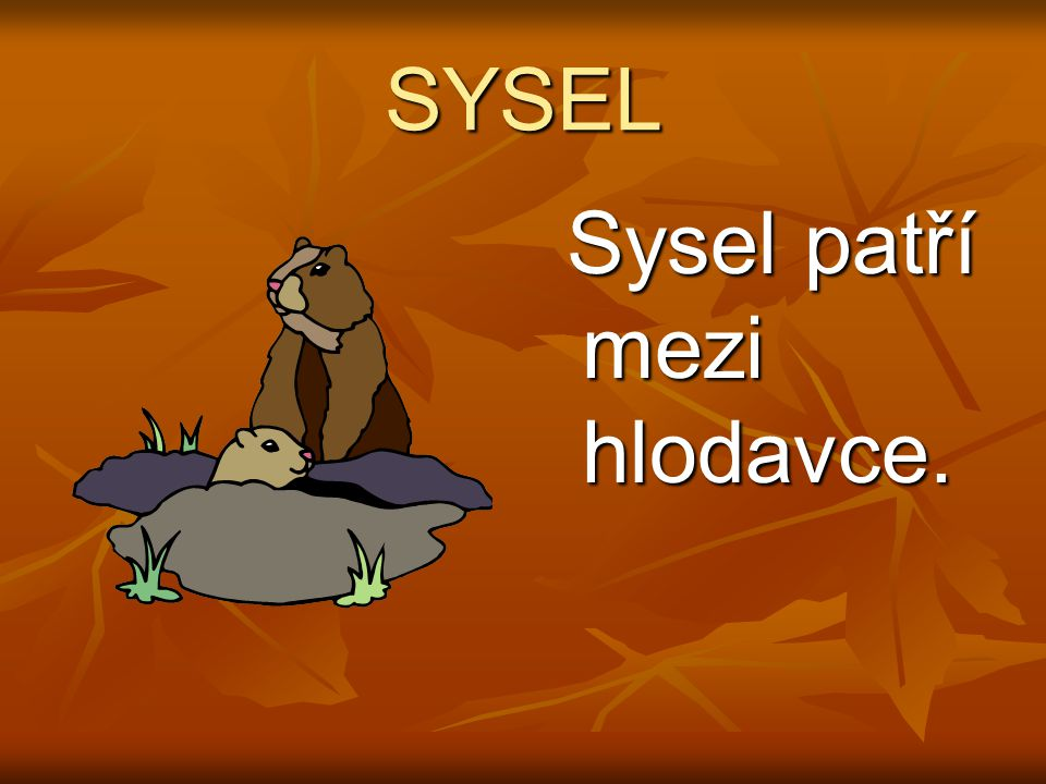 SYSEL Sysel patří mezi hlodavce. Sysel patří mezi hlodavce.