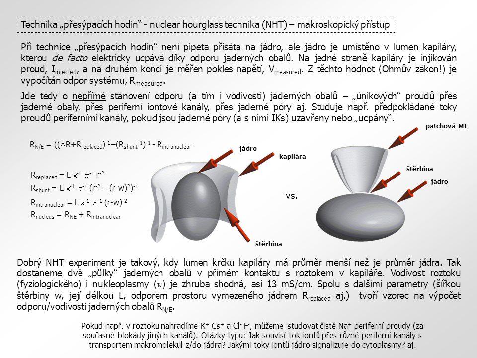"""Technika """"přesýpacích hodin - nuclear hourglass technika (NHT) – makroskopický přístup Při technice """"přesýpacích hodin není pipeta přisáta na jádro, ale jádro je umístěno v lumen kapiláry, kterou de facto elektricky ucpává díky odporu jaderných obalů."""