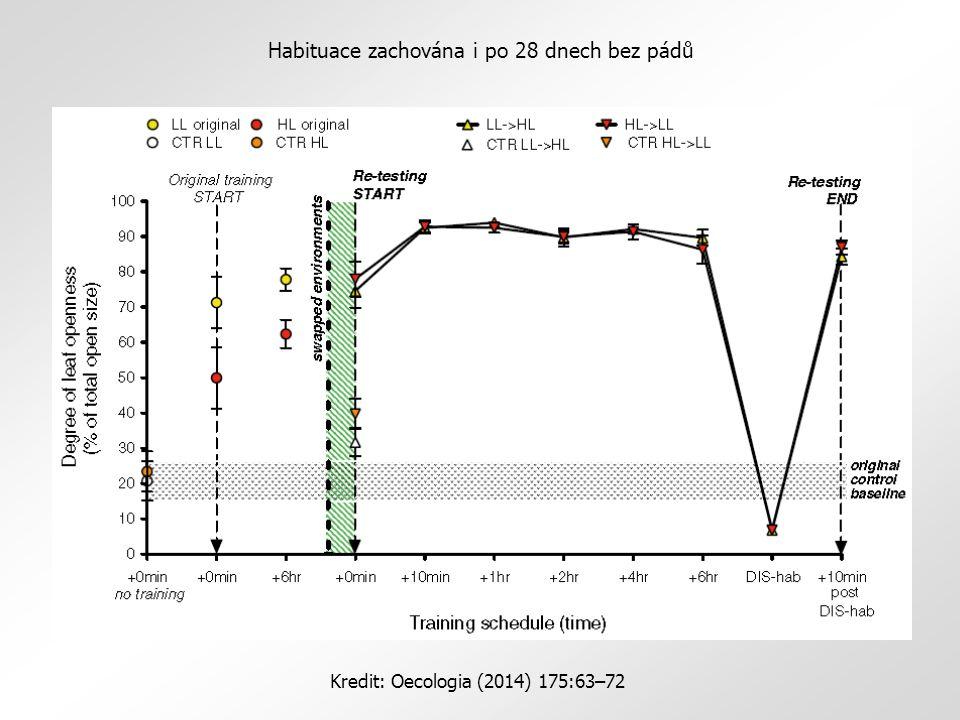 Habituace zachována i po 28 dnech bez pádů Kredit: Oecologia (2014) 175:63–72