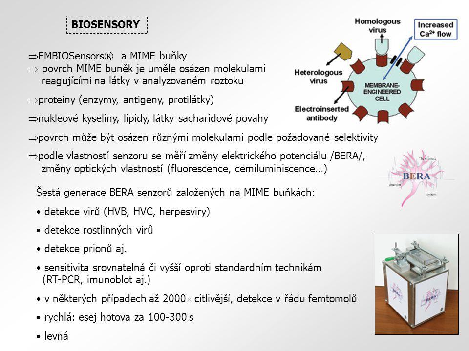  EMBIOSensors® a MIME buňky  povrch MIME buněk je uměle osázen molekulami reagujícími na látky v analyzovaném roztoku  proteiny (enzymy, antigeny, protilátky)  nukleové kyseliny, lipidy, látky sacharidové povahy  povrch může být osázen různými molekulami podle požadované selektivity  podle vlastností senzoru se měří změny elektrického potenciálu /BERA/, změny optických vlastností (fluorescence, cemiluminiscence…) BIOSENSORY Šestá generace BERA senzorů založených na MIME buňkách: detekce virů (HVB, HVC, herpesviry) detekce rostlinných virů detekce prionů aj.