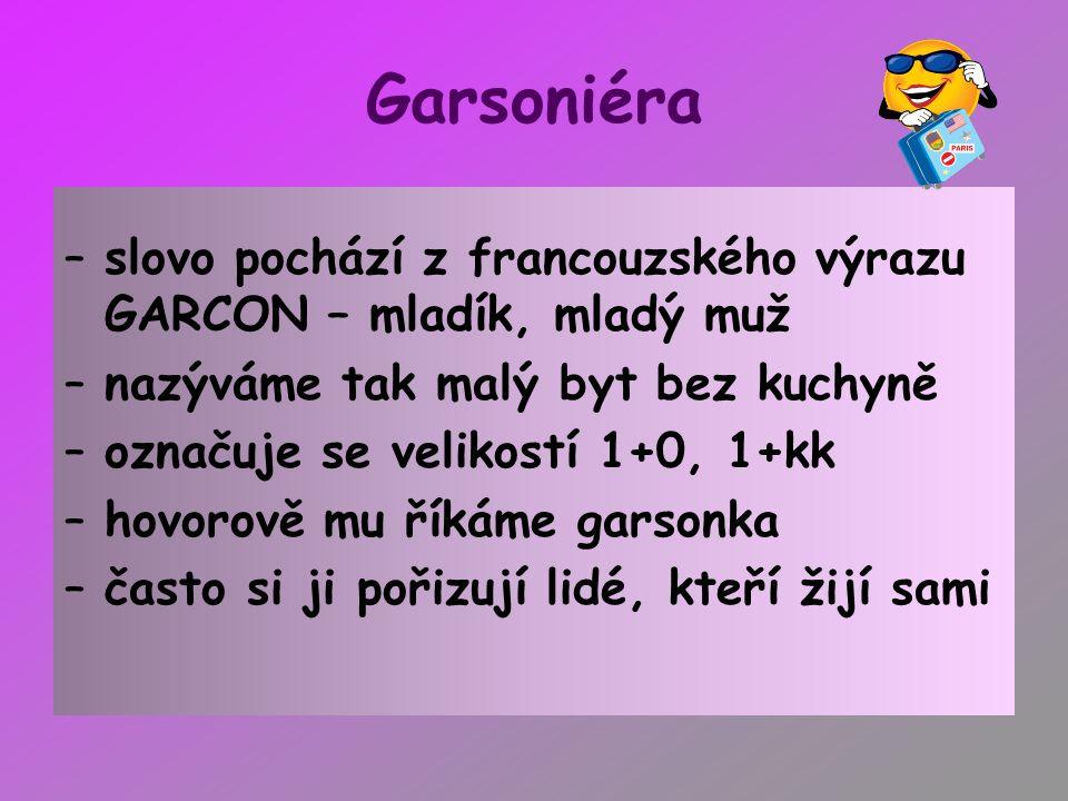 Garsoniéra –slovo pochází z francouzského výrazu GARCON – mladík, mladý muž –nazýváme tak malý byt bez kuchyně –označuje se velikostí 1+0, 1+kk –hovor