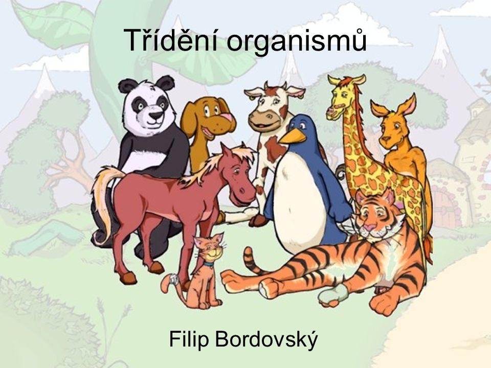 Třídění organismů Filip Bordovský