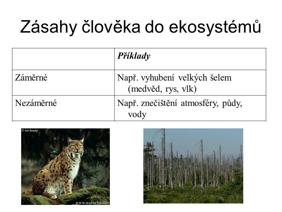 Zásahy člověka do ekosystémů Příklady ZáměrnéNapř. vyhubení velkých šelem (medvěd, rys, vlk) NezáměrnéNapř. znečištění atmosféry, půdy, vody