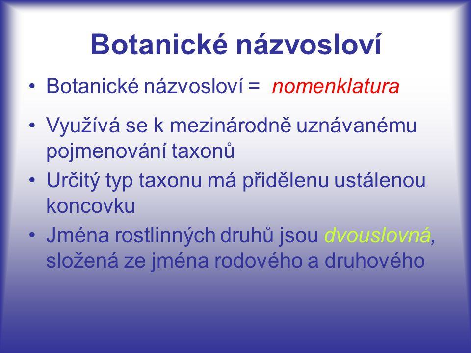 Botanické názvosloví Botanické názvosloví = Využívá se k mezinárodně uznávanému pojmenování taxonů Určitý typ taxonu má přidělenu ustálenou koncovku J