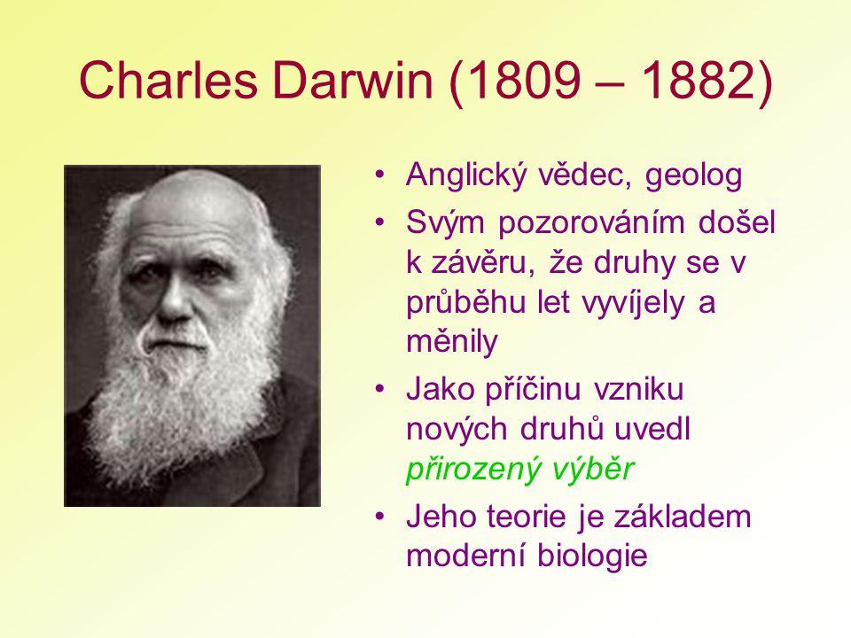 Charles Darwin (1809 – 1882) Anglický vědec, geolog Svým pozorováním došel k závěru, že druhy se v průběhu let vyvíjely a měnily Jako příčinu vzniku n