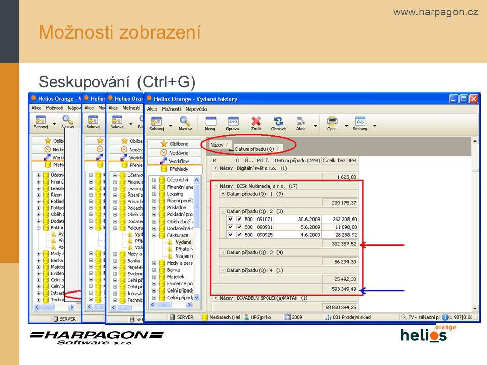 www.harpagon.cz Možnosti zobrazení Seskupování (Ctrl+G)