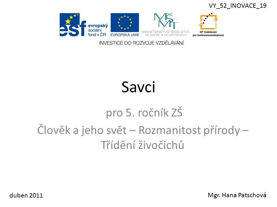 Savci pro 5. ročník ZŠ Člověk a jeho svět – Rozmanitost přírody – Třídění živočichů Mgr.