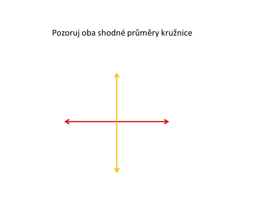 Pozoruj oba shodné průměry kružnice