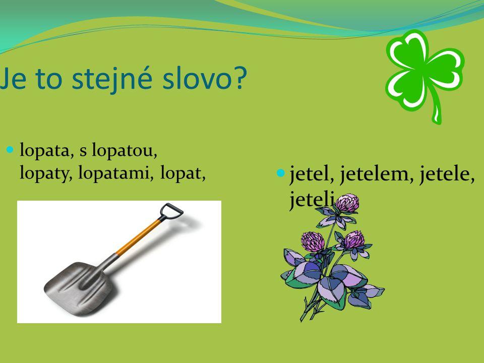 Je to stejné slovo? lopata, s lopatou, lopaty, lopatami, lopat, jetel, jetelem, jetele, jeteli,