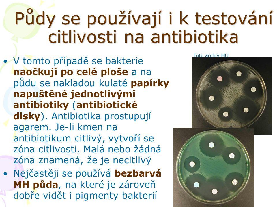 Půdy se používají i k testování citlivosti na antibiotika V tomto případě se bakterie naočkují po celé ploše a na půdu se nakladou kulaté papírky napu