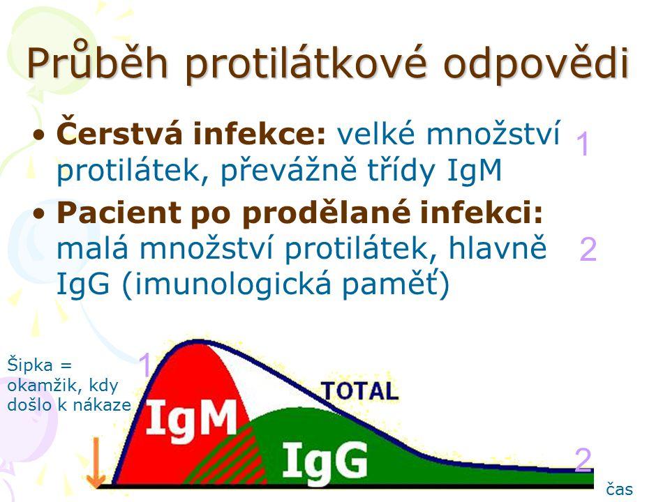 Průběh protilátkové odpovědi Čerstvá infekce: velké množství protilátek, převážně třídy IgM Pacient po prodělané infekci: malá množství protilátek, hlavně IgG (imunologická paměť) 1 1 2 2 Šipka = okamžik, kdy došlo k nákaze čas