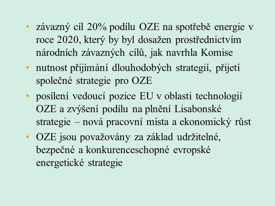 závazný cíl 20% podílu OZE na spotřebě energie v roce 2020, který by byl dosažen prostřednictvím národních závazných cílů, jak navrhla Komise nutnost přijímání dlouhodobých strategií, přijetí společné strategie pro OZE posílení vedoucí pozice EU v oblasti technologií OZE a zvýšení podílu na plnění Lisabonské strategie – nová pracovní místa a ekonomický růst OZE jsou považovány za základ udržitelné, bezpečné a konkurenceschopné evropské energetické strategie